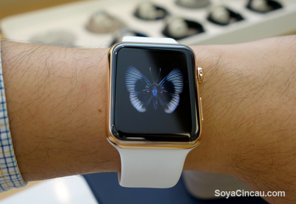 Guess which brand is number 1 for wearables?